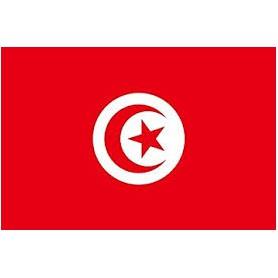 Tunisie - Dinar - TND